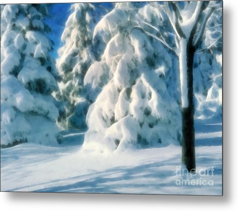 Winter Metal Print featuring the photograph Winter by Lutz Baar