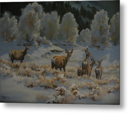 Mule Deer Metal Print featuring the painting First Cold Snap by Mia DeLode