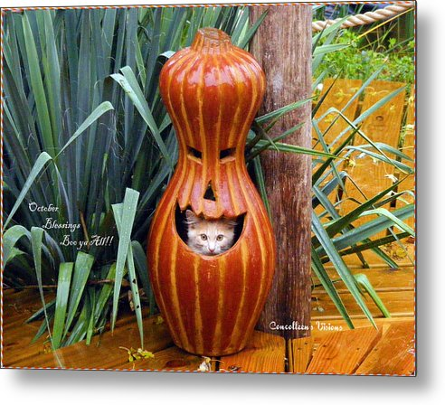 Kansas Metal Print featuring the photograph Boo Ya All by Concolleen's Visions Smith