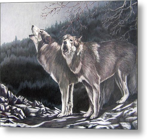 Animals Metal Print featuring the drawing Moonlight Sonata by Susan Moyer