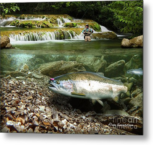 Trout Metal Print featuring the painting River Chrome by Alex Suescun
