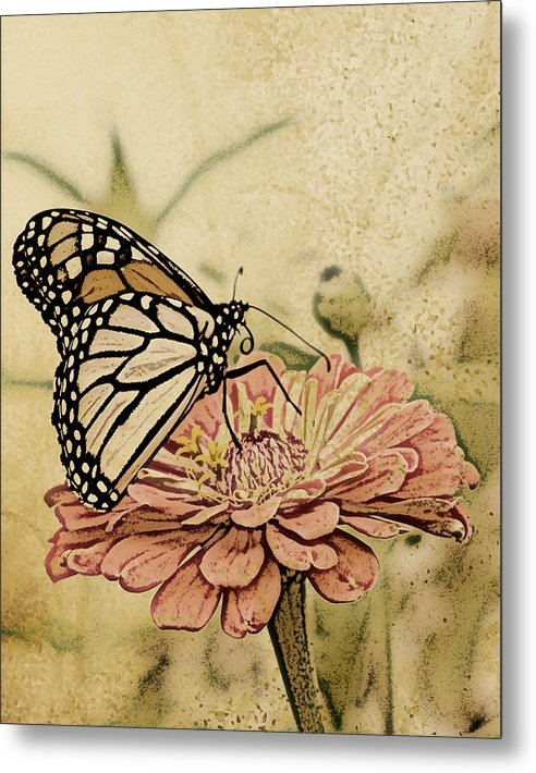Butterfly Metal Print featuring the digital art Painted Beauty by Sally Engdahl