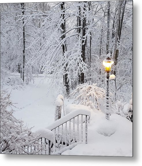 Winter Metal Print featuring the photograph Winter by Trevor Slauenwhite