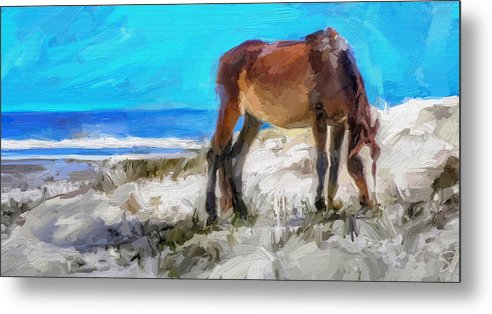 Cumberland Island Pony Horse Metal Print featuring the digital art Cumberland Pony by Scott Waters
