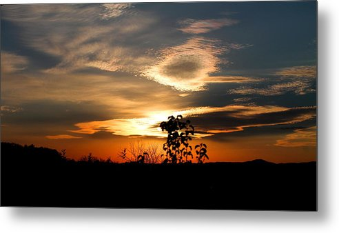 Sunset Metal Print featuring the photograph Simplistic Beauty by Candice Trimble