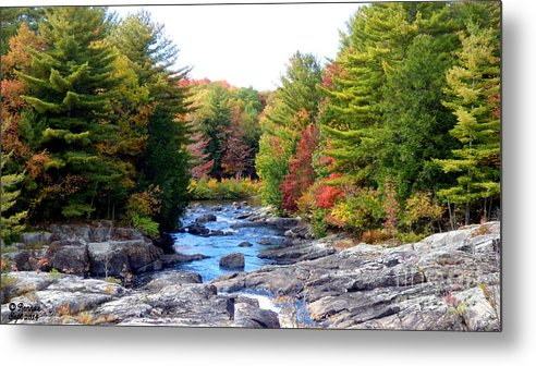 Landscape Metal Print featuring the photograph September Days by Rennae Christman
