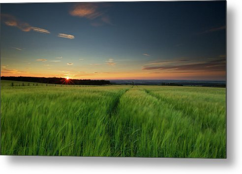 Tranquility Metal Print featuring the photograph Swaying Barley At Sunset by By Simon Gakhar