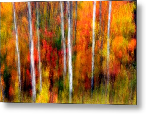 Canada Metal Print featuring the photograph Autumn Dreams by Doug Gibbons