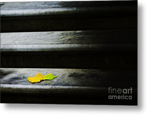 Maple Leaf Metal Print featuring the photograph Maple leaf on step by Sheila Smart Fine Art Photography