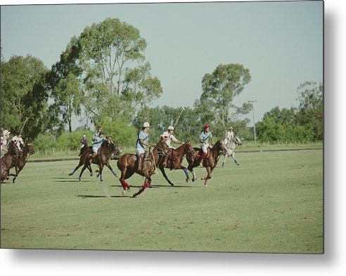 Horse Metal Print featuring the photograph Polo Match by Slim Aarons
