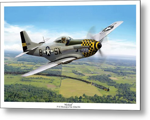 Aviation Metal Print featuring the painting Slybird by Mark Karvon