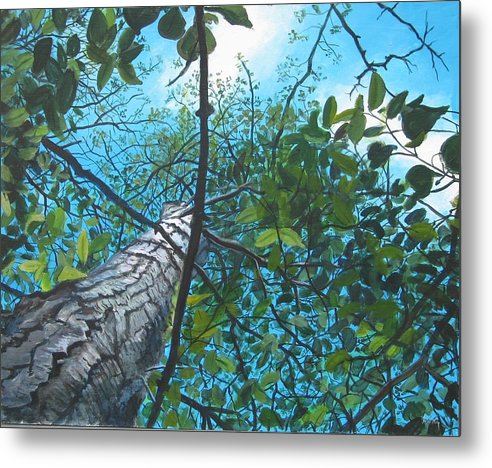 Landscape Metal Print featuring the painting Skyward by William Brody