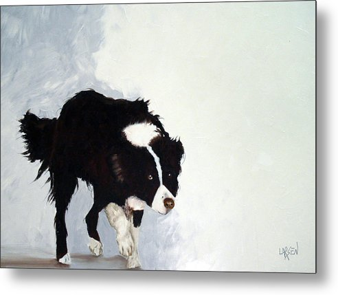 Border Collie Metal Print featuring the painting Border Collie by Dick Larsen