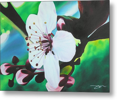 Flower Metal Print featuring the painting Cherry Blosom by Joshua Morton
