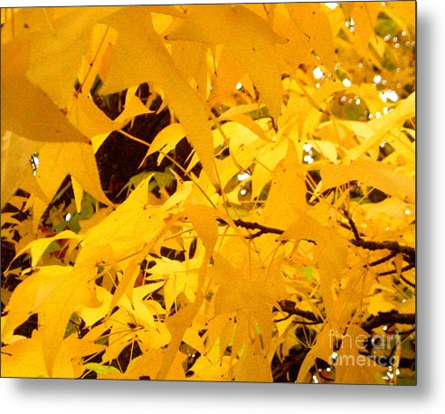 Serenity Scenes Photography Landscape Scenic Pacific Northwest Stream Forest Woods Trees River Rocks Shasta Eone Oregon Water Green Nature Union Creek Fall Colored Autumn Leaves Metal Print featuring the painting Efx.14 by Shasta Eone