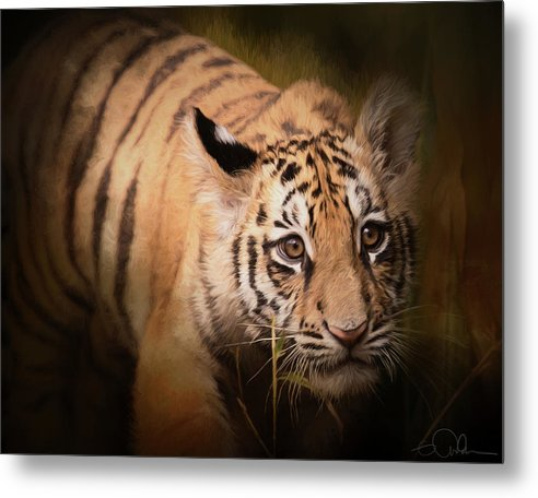 Tiger Metal Print featuring the photograph Tiger Cub by Gloria Anderson