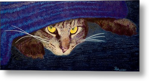 Maine Coon Cat Metal Print featuring the drawing Hide And Seek by Brent Ander