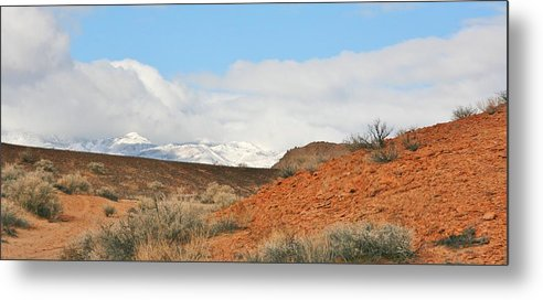 Sky Metal Print featuring the photograph Desert Delight by Marilyn Diaz