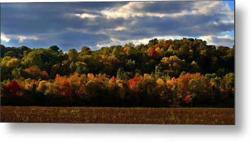 Autumn Metal Print featuring the photograph The Layers Of Autumn by Julie Dant