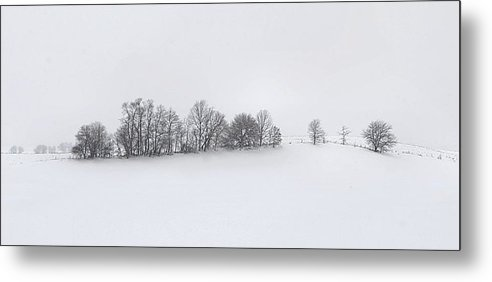 Winter Metal Print featuring the photograph Winter Tree Line In Indiana by Julie Dant