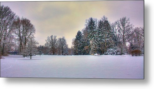 Winter Metal Print featuring the photograph Forest Edge by William Wetmore