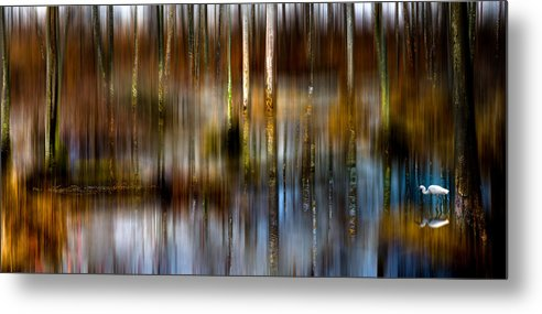 Egret Metal Print featuring the photograph No Egrets II by Sergio Smiriglio