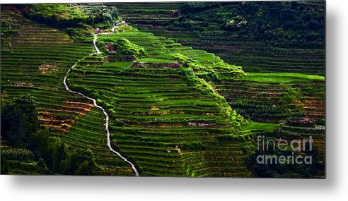 China Metal Print featuring the photograph Path The Heaven by Kabir Ghafari