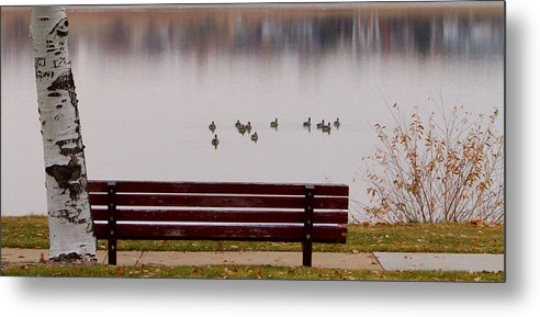 Aspen Metal Print featuring the photograph Lake Bench by James BO Insogna