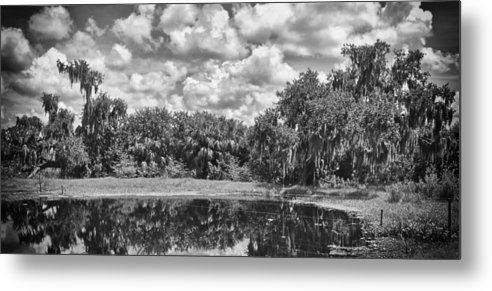 Florida Metal Print featuring the photograph Country Lake 2 by Skip Nall