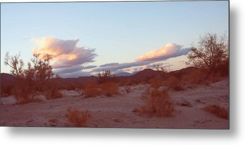 Nature Metal Print featuring the photograph Desert And Sky by Naxart Studio