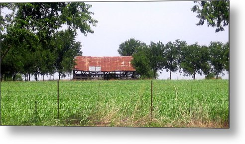 Country Metal Print featuring the photograph Feeding Barn by Amy Hosp