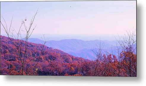 Landscape Metal Print featuring the photograph Appalachian Mountains, Va by Slawek Aniol