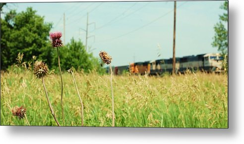 Photo Metal Print featuring the photograph Thistle Rail by Jame Hayes