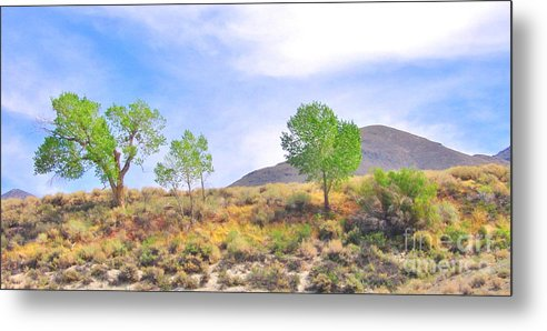 Sky Metal Print featuring the photograph Spring In The Desert by Marilyn Diaz