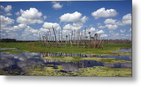 Orlando Metal Print featuring the photograph Orlando Wetlands Cloudscape by Mike Reid