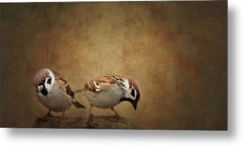 Flora Metal Print featuring the photograph Two Sparrows by Heike Hultsch