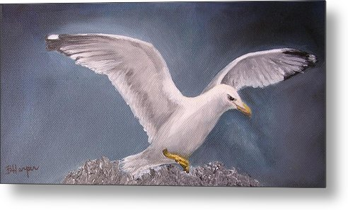 Seagull Metal Print featuring the painting Herring Gull by Barbara Harper