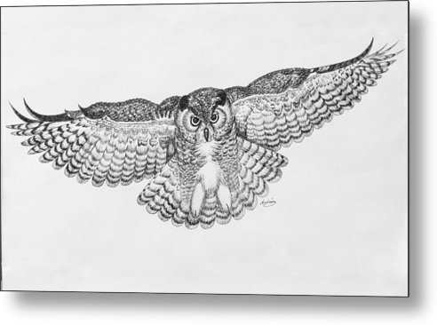 Owl Metal Print featuring the drawing Owl In Flight by Carol Nistle
