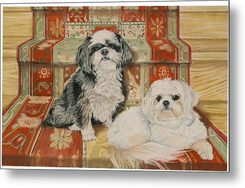 Shih Tzu Metal Print featuring the pastel On The Stairs by Barbara Keel