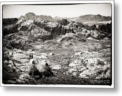 Lost In The Valley Metal Print featuring the photograph Lost In The Valley by John Rizzuto