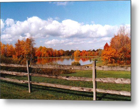 Autumn Colors Metal Print featuring the photograph 070506-44 by Mike Davis