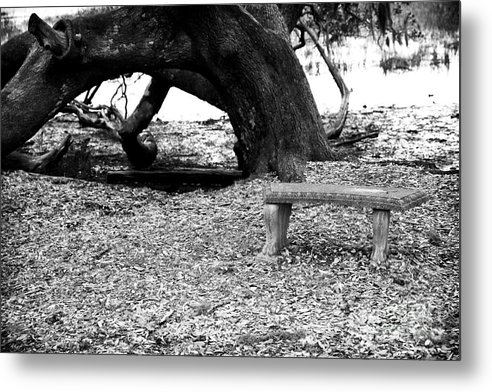 Bench By The Tree Metal Print featuring the photograph Bench By The Tree by John Rizzuto