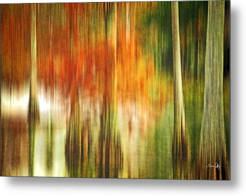 Abstract Metal Print featuring the photograph Cypress Pond by Scott Pellegrin