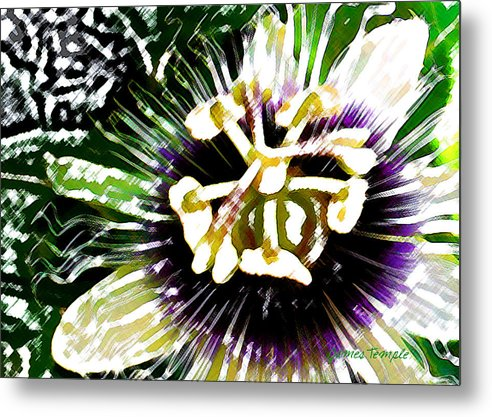 Passion Fruit Flower Metal Print featuring the digital art Passion Flower by James Temple