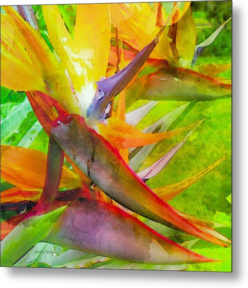 Tropical Metal Print featuring the digital art Tropical by James Temple