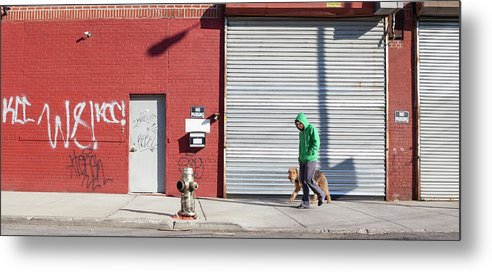Pets Metal Print featuring the photograph Young Man Walks Dog by Alex Potemkin
