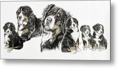 Bernese Mountain Dogs Metal Print featuring the painting Bernese Mountain Dog by Barbara Keith