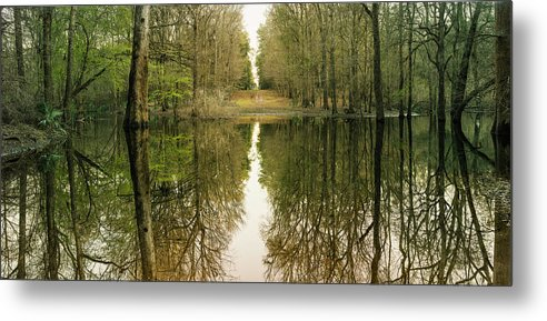 Swamp Metal Print featuring the photograph Suwanne Reflection Panoramic by Moises Levy