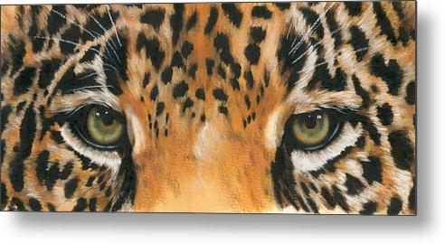 Jaguar Metal Print featuring the painting Jaguar Gaze by Barbara Keith