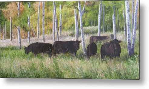 Black Angus Metal Print featuring the painting Black Angus Grazing by Tammy Taylor